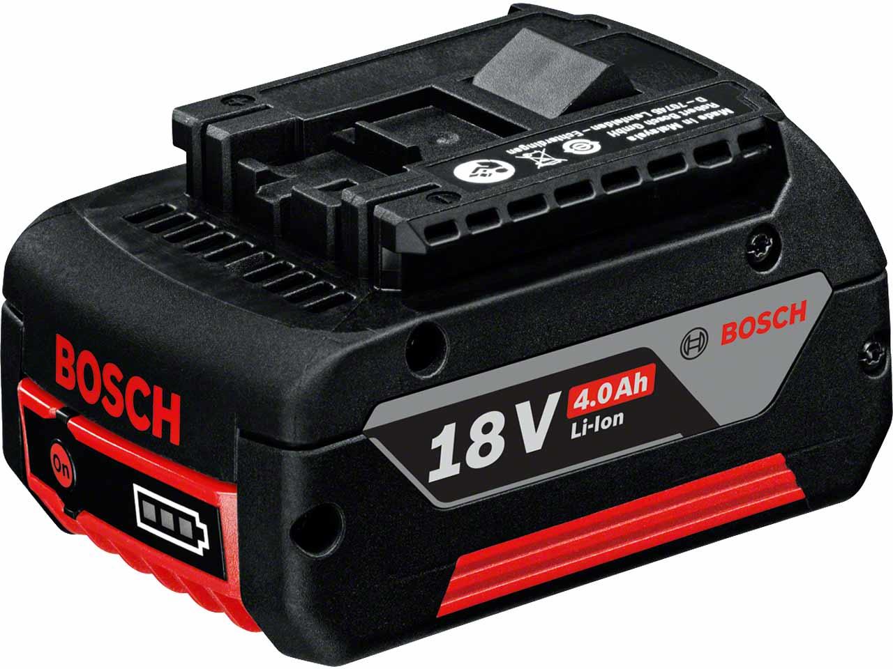 Bosch_1600z00038.jpg